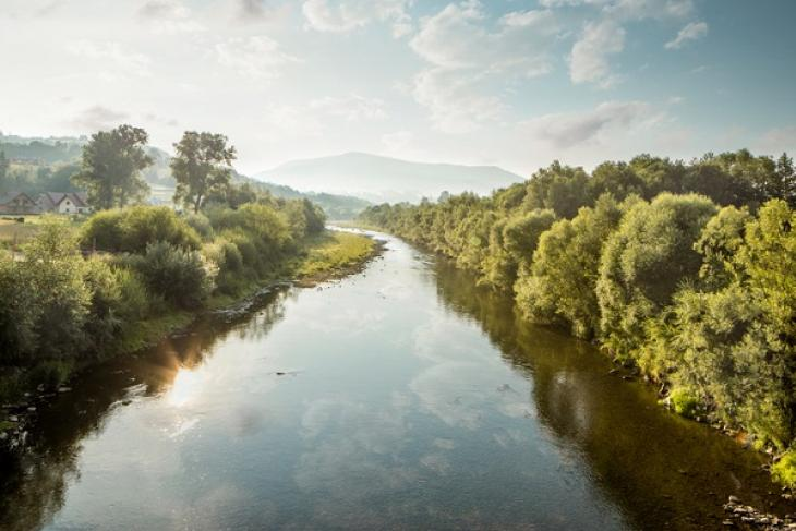The Parable of the River: Bedtime reading for the education